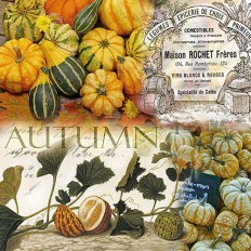 Ubrousky Autumn dýně