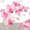 ubrousky-orchidej-a-motyl
