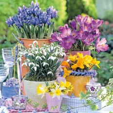 Ubrousky Jarní pozdrav
